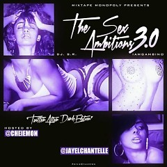 The Sex Ambitions 3.0  (CD1)