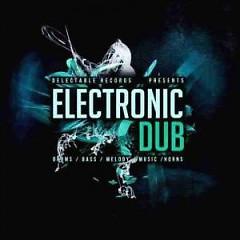Electronic Dub