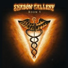 Room V - Shadow Gallery