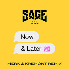 Now And Later (Merk & Kremont Remix) (Single) - Sage The Gemini