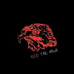 Red Tail Hawk (CDEP)