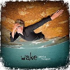 Wake - David Bridie