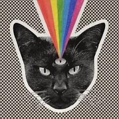 Black Cat - Never Shout Never