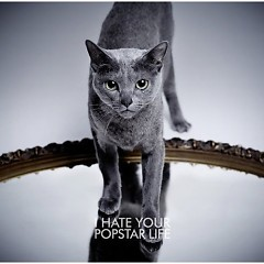 I Hate Your Popstar Life - Kuroyume
