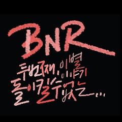 Irreducible - BNR