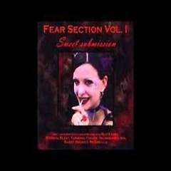 Fear Section Vol. 1 - Weg Zu Mir (Schicksals-Version 2002)