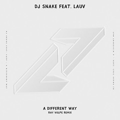 A Different Way (Ray Volpe Remix) - DJ Snake