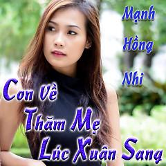Con Về Thăm Mẹ Lúc Xuân Sang (Single)