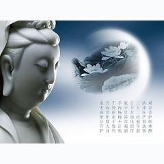 Album Thuyết pháp Phật pháp nhiệm màu (Disc 3) Triết lý về đôi dép -
