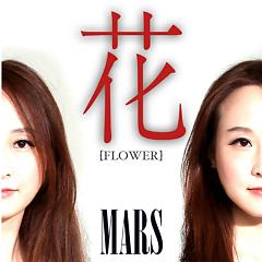 Flowers (Single)