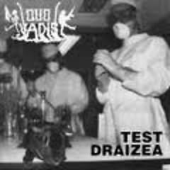 Test Draizea - Quo Vadis (Poland)