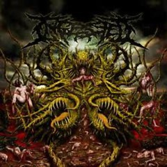 Surpassing The Boundaries Of Human Suffering - Ingested