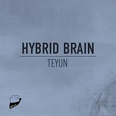 Hybrid Brain - Teyun