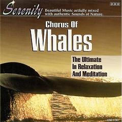 Serenity - Chorus of Whales