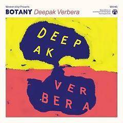 Deepak Verbera
