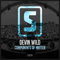 Components Of Matter (Single) - Devin Wild