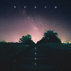 Night Falls (Single) - Punch