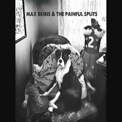 Max Bemis And The Painful Splits (Part2)