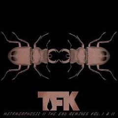 Metamorphosiz II: The End Remixes Vol. I & II