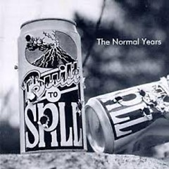 The Normal Years - Built To Spill