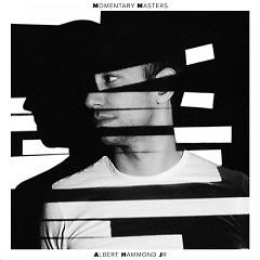 Momentary Masters - Albert Hammond Jr