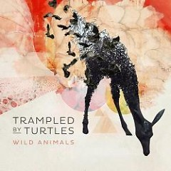 Wild Animals - Trampled By Turtles