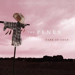 Dark So Gold