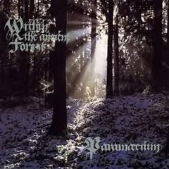 Within The Ancient Forest - Paramaecium
