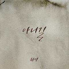 No Way (Single) - WONYOUNG