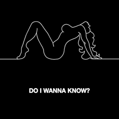 Do I Wanna Know - Arctic Monkeys