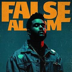 False Alarm (Single)