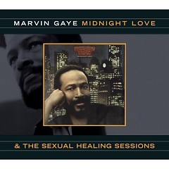 The Sexual Healing Sessions - Marvin Gaye