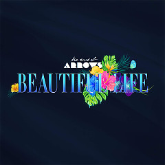 Beautiful Life (Single)
