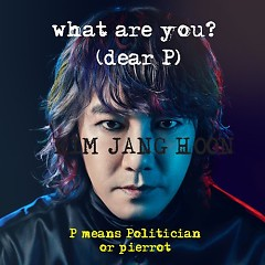 What Are You? - Kim Jang Hoon