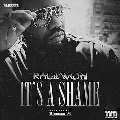 It's A Shame - Raekwon