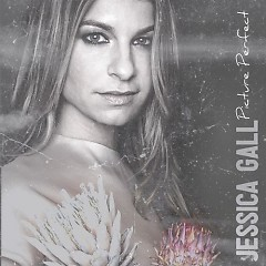 Picture Perfect - Jessica Gall