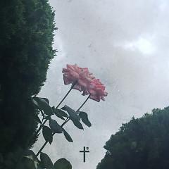 Tell Me (Single) - TSUN