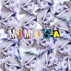 Mimosa (Acoustic)