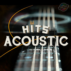 Hits Acoustic Vol. 2 - Various Artists