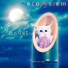 Tsukiyo no net  - Ecosystem
