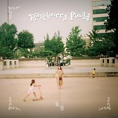Dreams, Frame - Raspberry Field