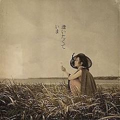 逢いたくていま (Aitakute Ima)