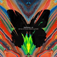 Hung Up (Single) - Tritonal