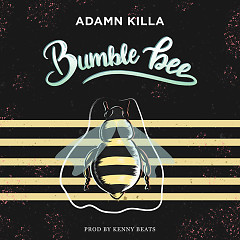 Bumble Bee (Single) - Adamn Killa