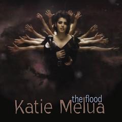 The Flood - Single
