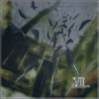 Black Bird - VII-Sense