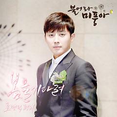 Blow Breeze OST Part.21 - Romantic Punch