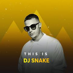 Những Bài Hát Hay Nhất Của DJ Snake - DJ Snake