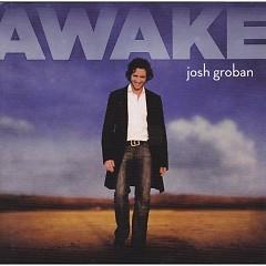 Awake (US Promo CDS)