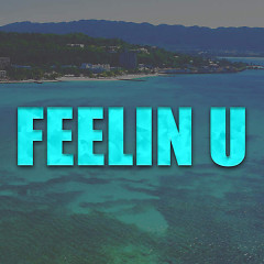 Feelin U (Single)